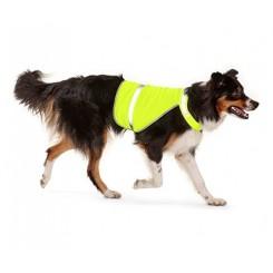 جلیقه ایمنی سگ چیبو | Tchibo