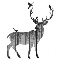 پک 11 تکه استیکر مخصوص دیزاین چیبو | Tchibo