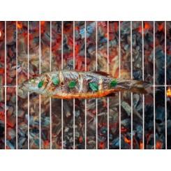 توری کباب پز مخصوص ماهی فلورابست | Florabest