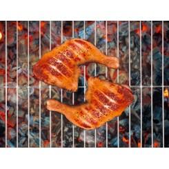 توری کباب پز مخصوص مرغ و گوشت فلورابست | Florabest