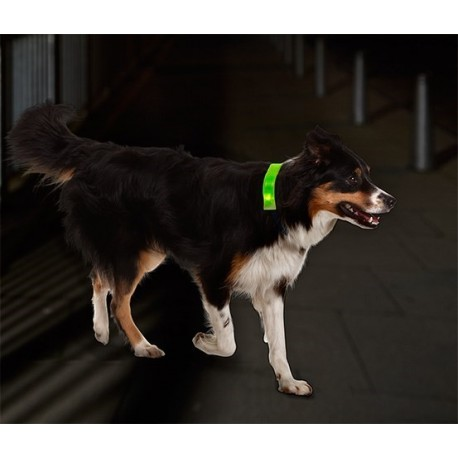 کاور LED قلاده سگ چیبو   Tchibo